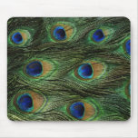 Peacock Feather Print Mousepad