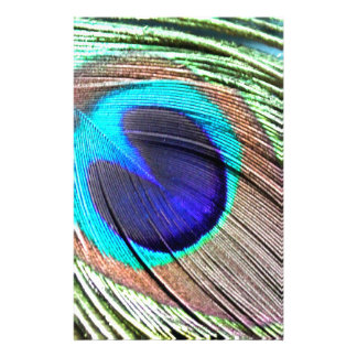 Peacock Feather Product Stationery Design