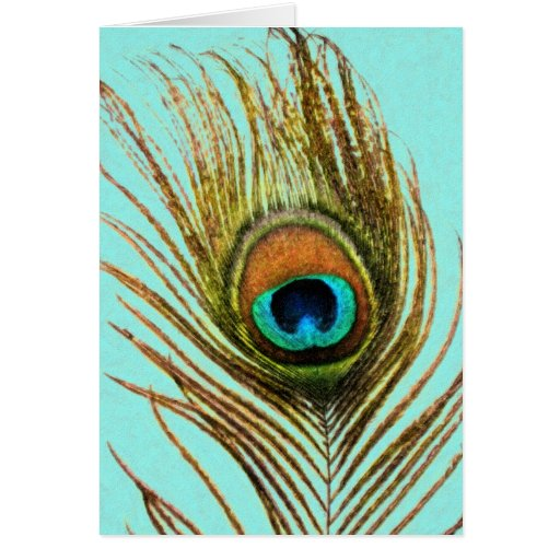 Peacock Feather Set 1107 Greeting Card