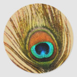 Peacock Feather Set 1108 Classic Round Sticker