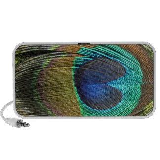 Peacock Feather Speaker