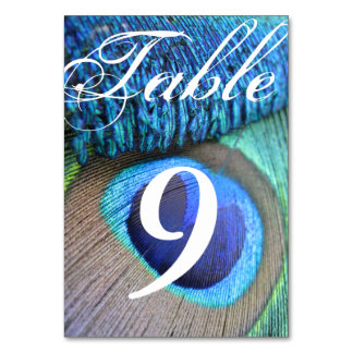 Peacock Feather Table Number cards