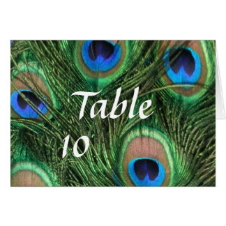 Peacock Feather Table Numbers