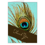 Peacock Feather Thank You Set 1107 Stationery Note Card