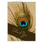 Peacock Feather Thank You Set 1108 Stationery Note Card