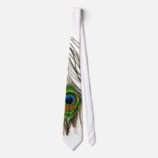 peacock feather tie