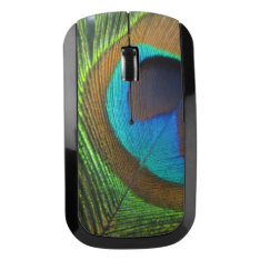 Peacock Feather Wireless Mouse at Zazzle