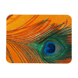 Peacock feather with Orange Glitter Still Life Magnet