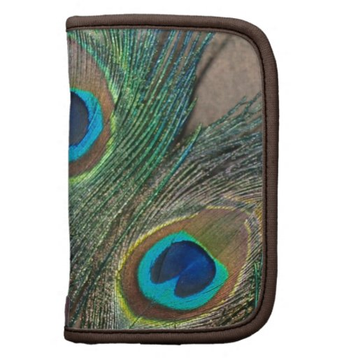 Peacock Feather with Rocks Planner