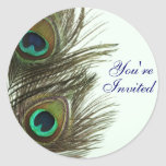 Peacock Feather You're Invited Envelope Stickers