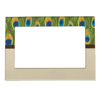 Peacock Feathers 2 Magnetic Frame