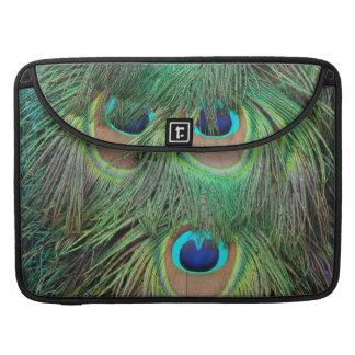 Peacock Feathers 3 Sleeve For MacBook Pro