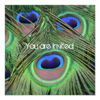 Peacock Feathers Baby Shower Card
