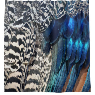 Shower Curtains black and blue shower curtains : Peacock Blue Shower Curtains | Zazzle