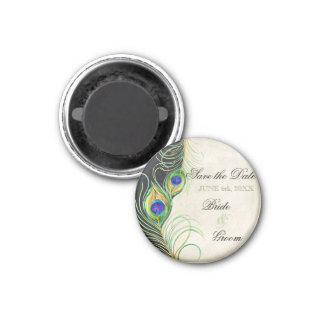 Peacock Feathers Black Damask Save the Date Magnet
