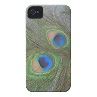 Peacock Feathers Blackberry Barely There Case