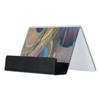 Peacock Feathers Bright Desk Business Card Holder