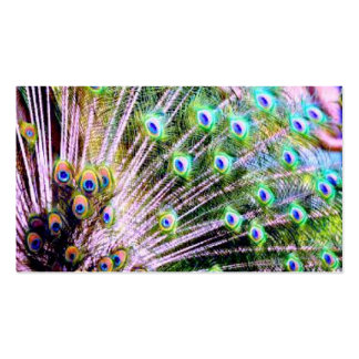 Peacock Feathers Business Card Template