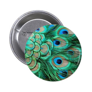 PEACOCK FEATHERS PINBACK BUTTONS