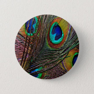 Peacock Feathers Button