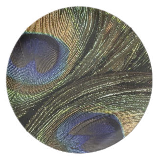 PEACOCK FEATHERS BY LIZ LOZ DINNER PLATE