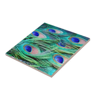 Peacock Feathers Ceramic Tiles