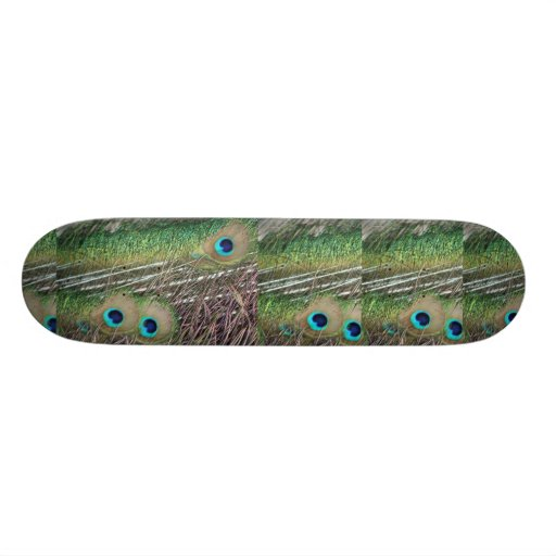 Peacock feathers close up peafowl design skateboard deck