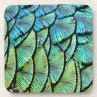 Peacock Feathers Drink Coaster