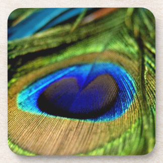 Peacock Feathers Beverage Coaster