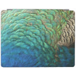 Peacock Feathers Design iPad Cover