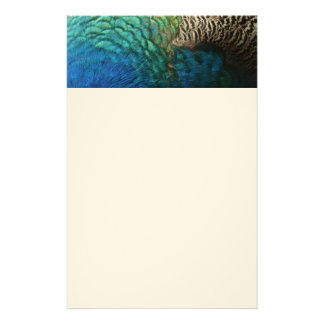 Peacock Feathers Design Stationery Paper