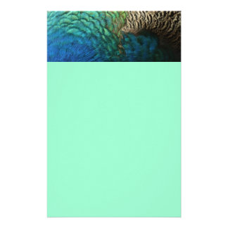 Peacock Feathers Design Personalized Stationery