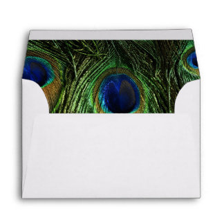 Peacock Feathers Envelope