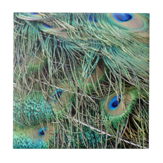 Peacock Feathers Exotic Growth New Eyes Ceramic Tile