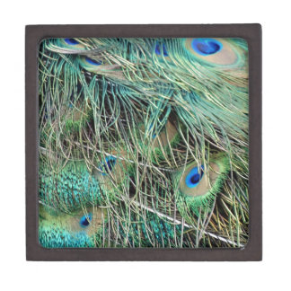 Peacock Feathers Exotic Growth New Eyes Keepsake Box