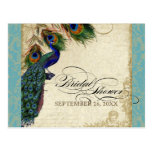 Peacock & Feathers Formal Bridal Shower Aqua Blue Post Cards