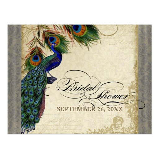 Peacock & Feathers Formal Bridal Shower Silver Postcard