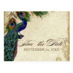 Peacock & Feathers Formal Save the Date Aqua Blue Post Cards