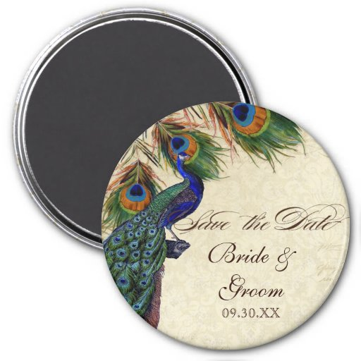 Peacock & Feathers Formal Save the Date Black Tan 3 Inch Round Magnet