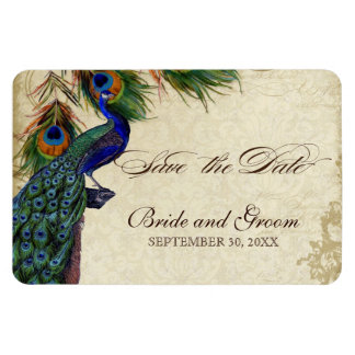 Peacock & Feathers Formal Save the Date Black Tan Rectangular Photo Magnet