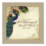 "Peacock & Feathers Formal Wedding Invite Taupe Tan 5.25"" Square Invitation Card"
