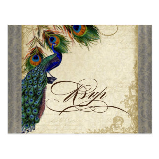 Peacock Feathers Formal Wedding RSVP Response Postcard