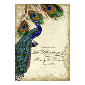 Peacock & Feathers Formal Wedding Tea Stained 5x7 Paper Invitation Card
