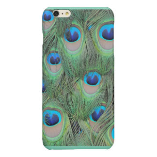 Peacock Feathers Glossy iPhone 6 Plus Case