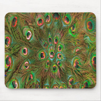 Peacock feathers green Background Mouse Pad