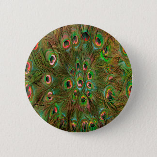 Peacock feathers green Background Pinback Button