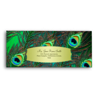 Peacock feathers grungy green #10 envelopes