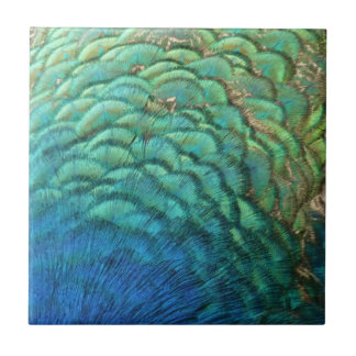 Peacock Feathers I Colorful Abstract Nature Design Ceramic Tile