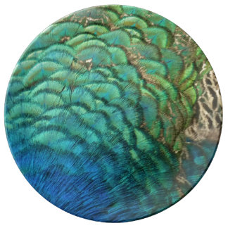 Peacock Feathers I Colorful Abstract Nature Design Dinner Plate