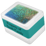 Peacock Feathers I Colorful Abstract Nature Design Drink Cooler